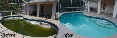 Amazing My Pool Is Green!! Now What???